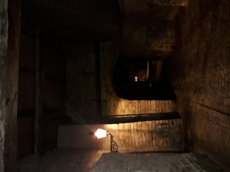 Lichtplanung-plus.de-KRONACH leuchtet- Quallen Berchinale 2017 (2)
